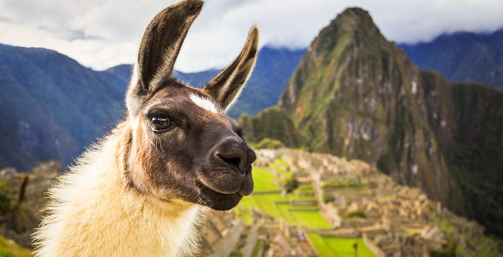 Новогодние туры в Перу с ПОДАРКАМИ!