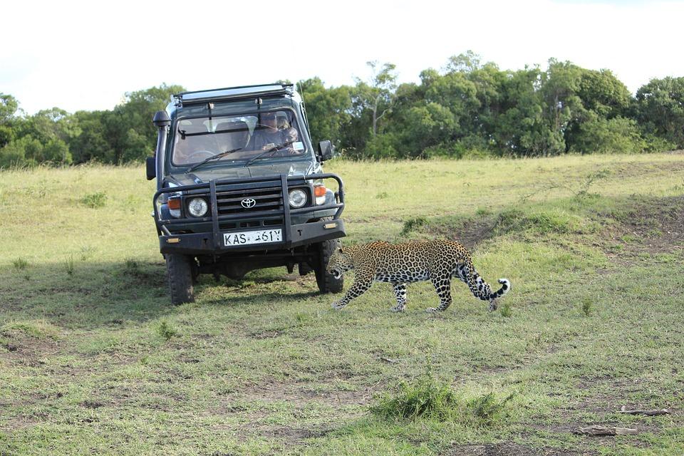 Сумасшедшие скидки на экскурсионные туры в ЮАР!