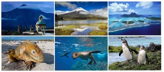 Экскурсионный тур! Весь Эквадор (с Галапагосскими островами)!