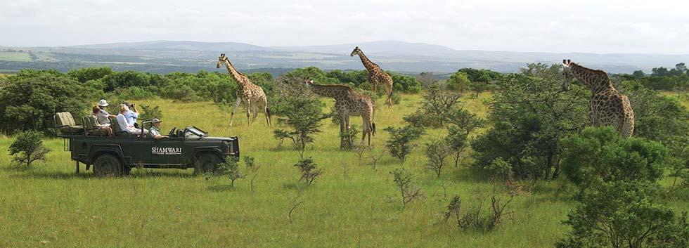 Кейптаун (4н) - сафари-парк Крюгера (2н) - Йоханнесбург (1н) + пляжи Маврикия