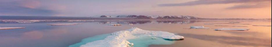 Туры в Арктику (Шпицберген)