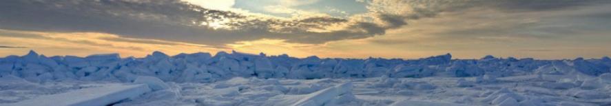 Туры в Арктику