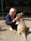 Завтрак с кенгуру