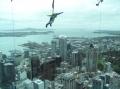 С высоты человечьго полета