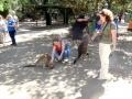 В парке дикой природы