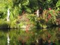 Ботанический сад, Bahamas Bahamas