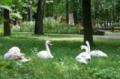 Зоопарк Витебска