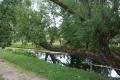 У пруда в парке