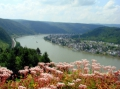Панорама Рейна со стен замка Марксбург. Автор: Юлия Ильина, г.Москва