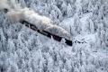 Поезд, идущий через заснеженный лес в Германии. Автор: Наталья Савина, г.Нижний Новгород