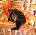 Уже знаменитый баварский кот из Фюссена. Автор: Оксана Софронова, г.Екатеринбург