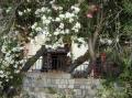 Уютные таверны в городе Кос