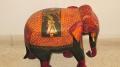 И опять слоны!