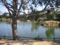 Сафари-парк