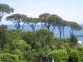 Вид из Grand Hotel Punta Molino 5*