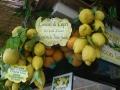 Гордость юга Италии - лимоны
