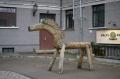 Городская лошадь, Рига