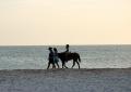 Прогулки по пляжу (о. Коче)
