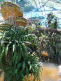 Экзотический сад в Ньячанге
