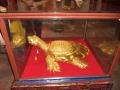 Золотая черепаха у озера Возвращенного меча