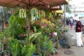 Рынок цветов. Далат